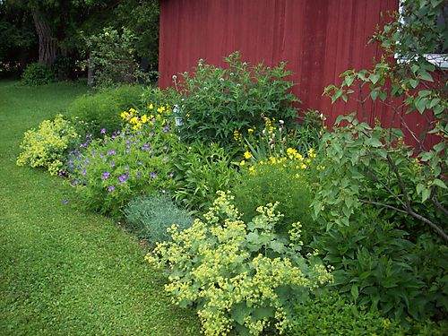 Shed garden overall
