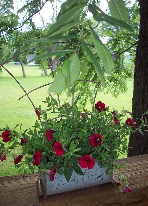 Planter w flowers1