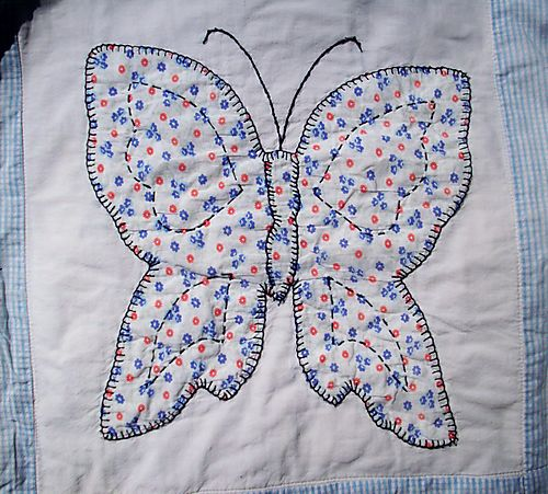 Red and blue flowered b utterfly