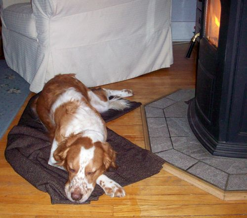 Carson w blanket