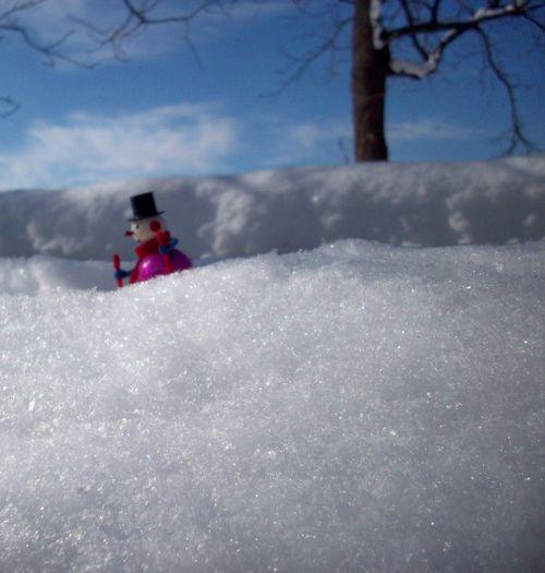 Snowman far away