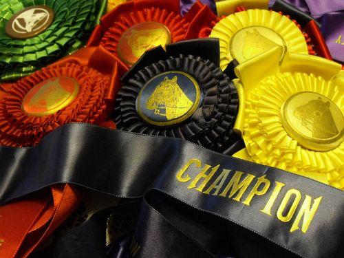 Champion ribbon