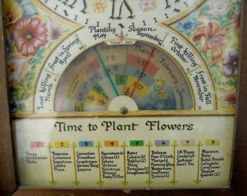 Flower dial