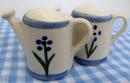 Salt and pepper watering cans