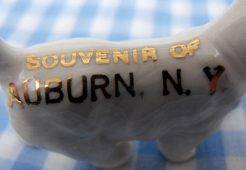 Souvenir dog