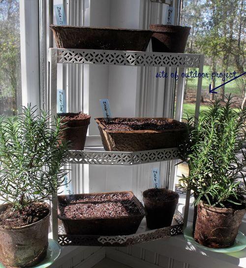 Kitchen window w project