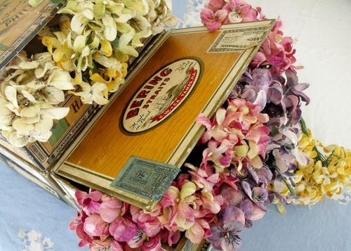 1 cigar boxes