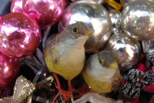 Cottton birds