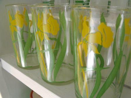 Daffodil swigs