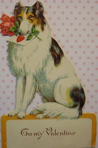 Dog_overall_2