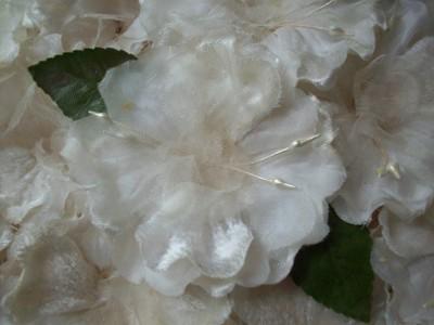 White_flower1_2